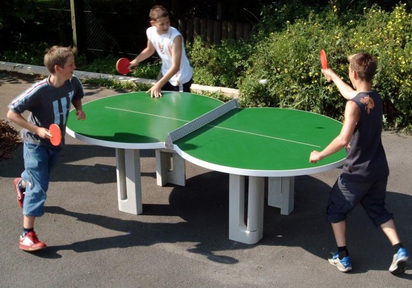 Выбор теннисного стола